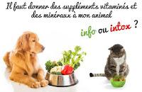 Vetoquino Care Energie pour votre chien ou chat
