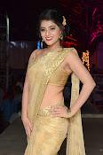 Yamini Bhaskar sizzling in saree-thumbnail-20