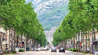 Grenoble: Una valla por un árbol