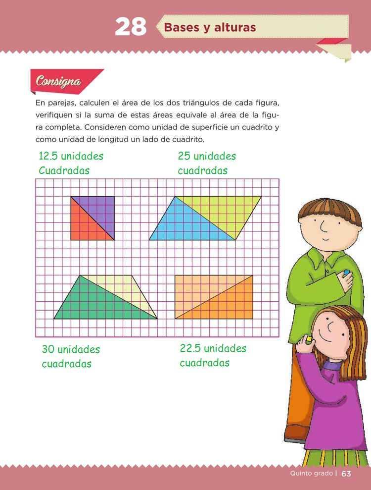 Bases y alturas -Desafío 28- Desafíos Matemáticos Quinto grado Contestado