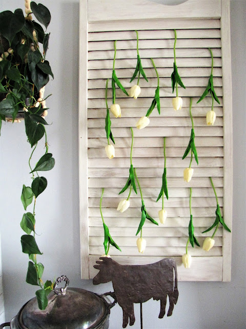 white tulips hanging on a shutter for wall decor