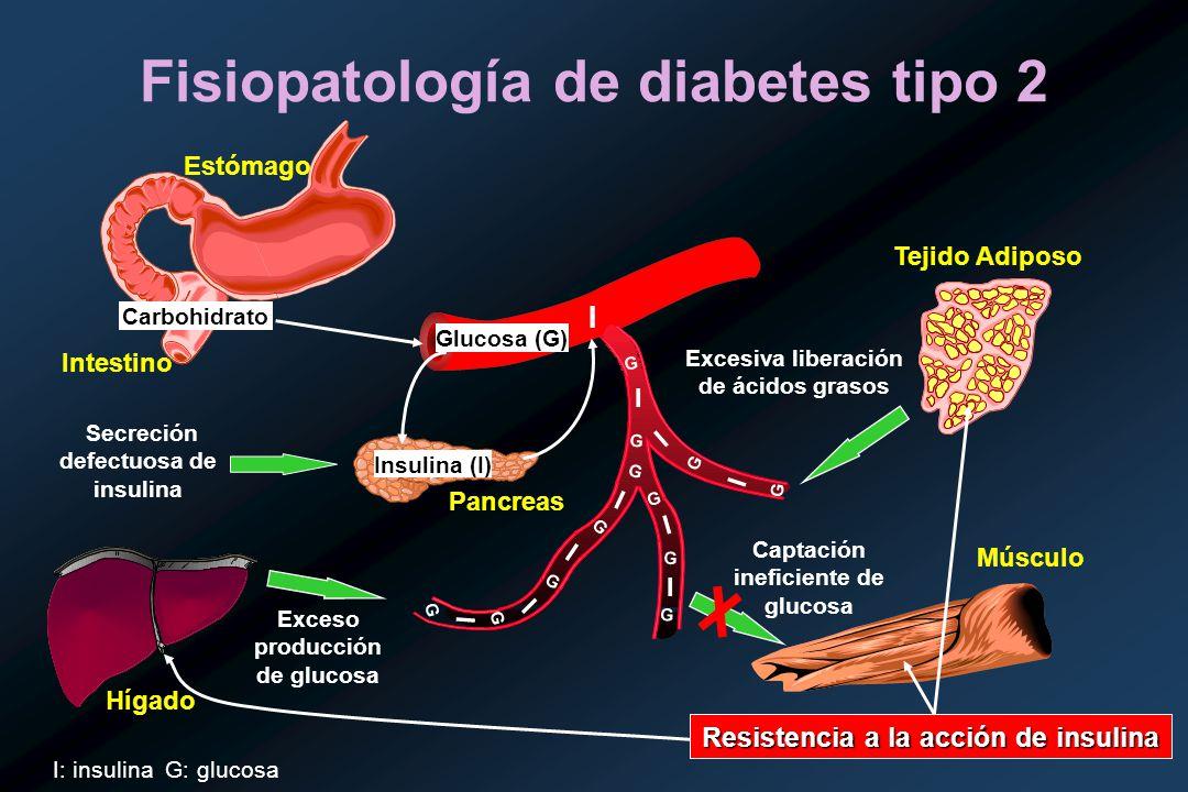 Diagrama de fisiopatología de diabetes mellitus tipo 2 de pancreatitis