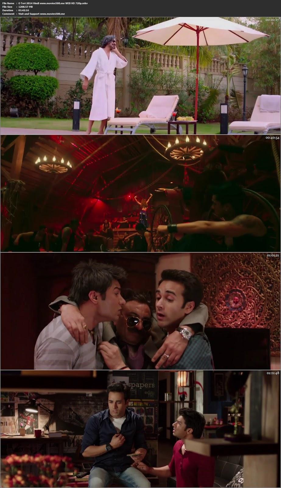 O Teri 2014 Hindi Full Movie WEB HD 720p at movies500.info