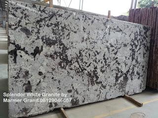 Lantai Granit Splendor White