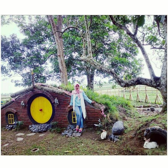 rumah hobbit di rabbit park blitar