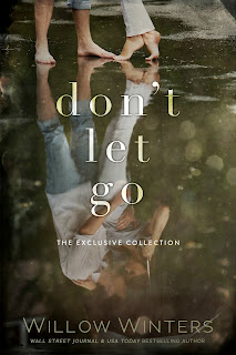 Book Cover Image of Don't Let Go