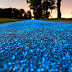 Poland Unveils Glowing Bright Blue Bike Lane That's Charged By The Sun