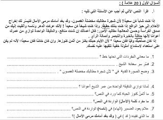 امتحان لغة عربية للصف التاسع الشهر الثاني الفصل الأول 2018