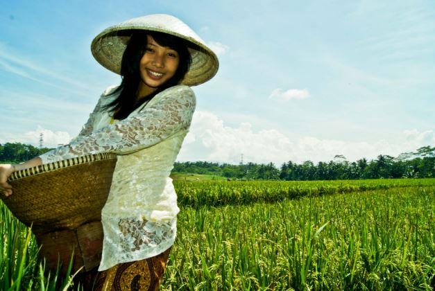 Mendorong Investor Dari Tiongkok & Jepang Masuk Ke Indonesia