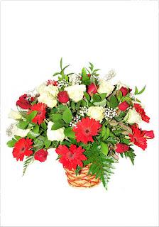 bunga mawar romantis bandung