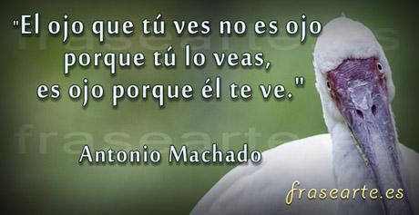 Frases para pensar de Antonio Machado