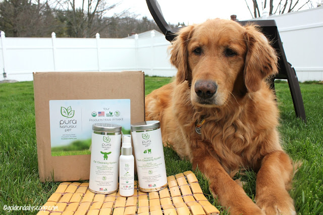 pure naturals pet organic healthy dog grooming products review and giveaway