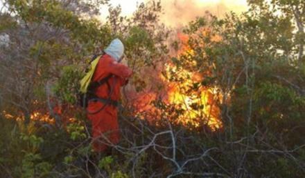 Inema realiza ações de combate a incêndio em Campo Formoso