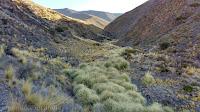 Vega, arroyo, paseo, caminata, ascenso, cumbre, tontal Norte