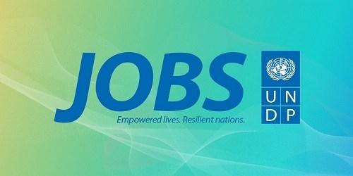 Vacancy Announcement UNDP 2020 - UNDP JOB OPPORTUNITY 2020