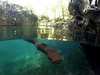 obyek wisata mata air tilanganga' Toraja