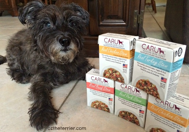 Oz the Terrier CARU Pet Food #NourishWithLove