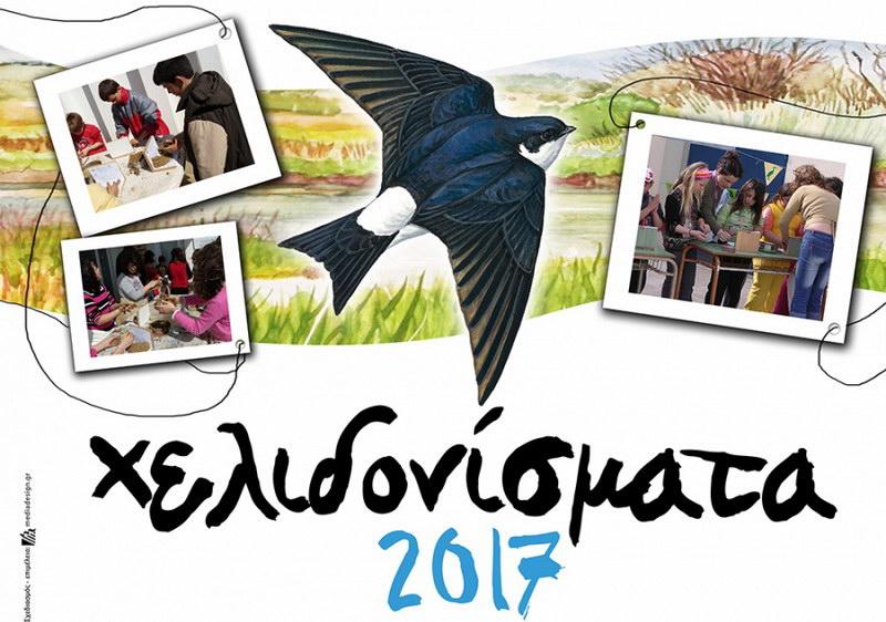 Αλεξανδρούπολη: Καλωσορίζουμε τα χελιδόνια, φτιάχνοντας τις φωλιές τους