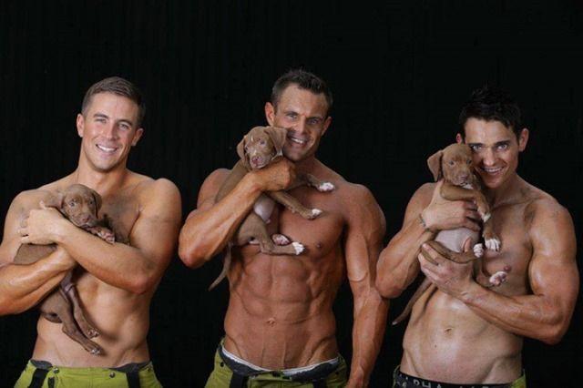 Calendario de los bomberos australianos: chicos guapos y cachorros.