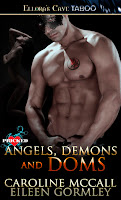 http://meen-readingjournal.blogspot.ie/2013/01/angels-demons-and-doms.html