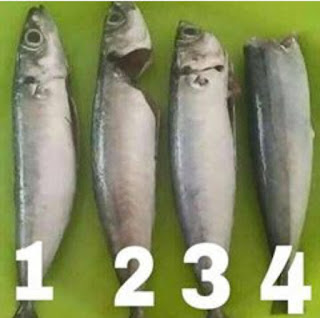 cara siang ikan, 4 cara siang ikan, bagaimana siang ikan, bagaimana buang perut ikan, cara bersihkan ikan, hidangan ikan ,,resepi kepala ikan, resepi masakan ikan