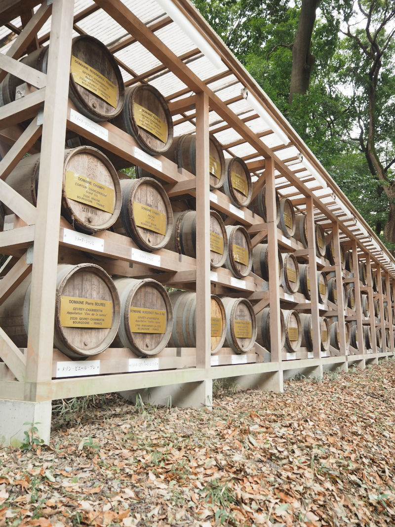 Meiji Shrine Sake Barrels