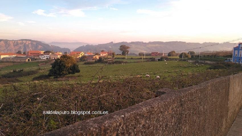 asturias-carreño-primavera