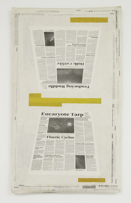 Mark Manders  Perspective Study, 2011 Offset print and acrylic on paper, chickenwire, wood 56 x 95 x 4 cm