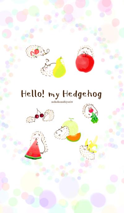 Hello! my Hedgehog