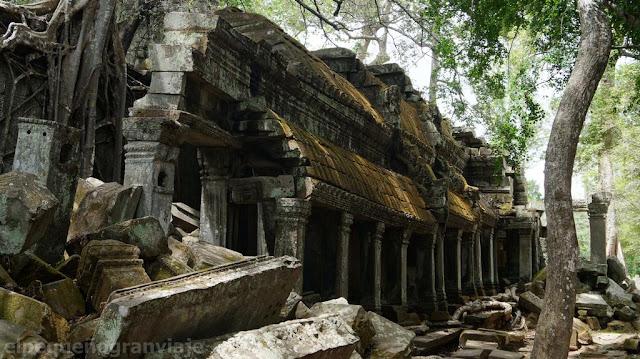 ruinas, arboles, camboya, recorrido, bello