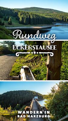 Rundweg Eckerstausee | Wanderung Bad Harzburg | Wandern-Harz | Wandern in Niedersachsen