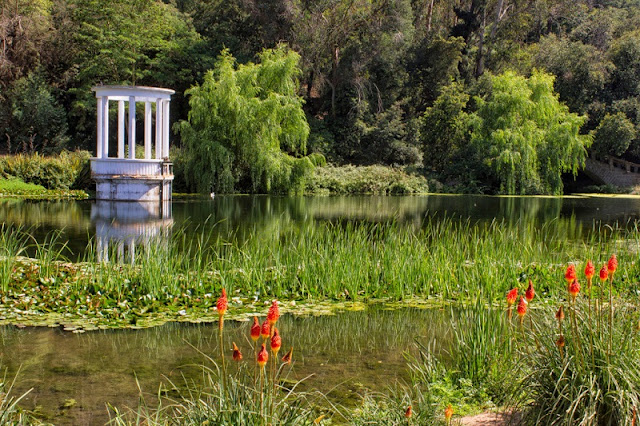 Visitar o Jardim Botânico Nacional em Viña del Mar