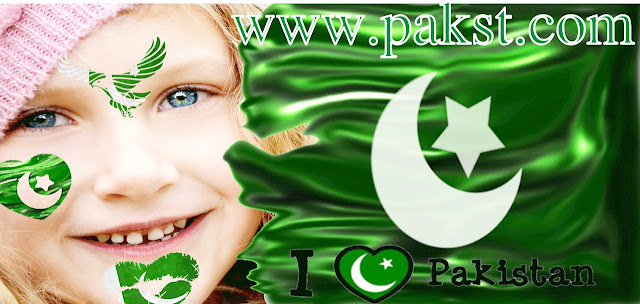 Pakistani Flag Face Maker Android App Free Download