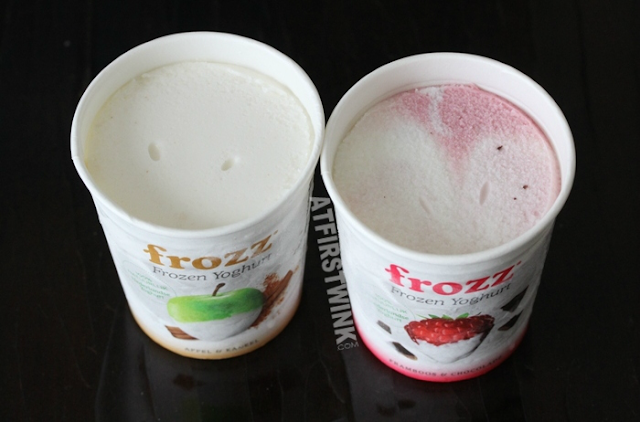 Frozz Frozen Yoghurt (apple cinnamon) appel & kaneel (raspberry chocolate) framboos & chocolade