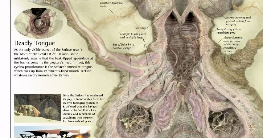 Eclectic Arcania  Graphic of the Day  Sarlacc Schematic