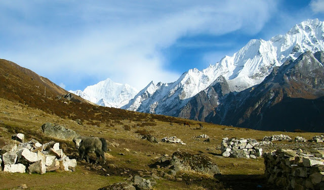 7 Popular Treks in Nepal