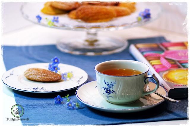 Gartenblog Topfgartenwelt Buchtipp Französisch Backen mit Rezept für Madeleines: Madeleines Backzeit