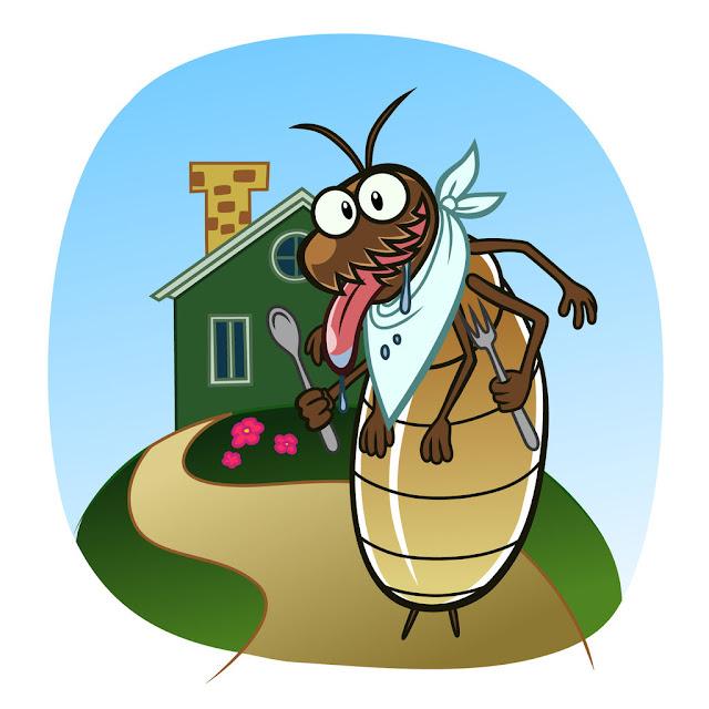 اقوى شركة مكافحة حشرات بالدمام وجدة