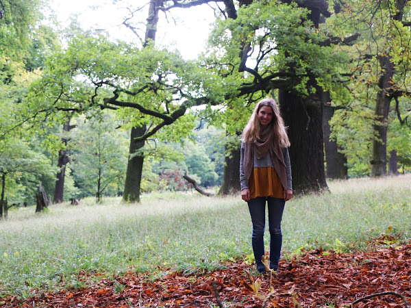 Herbst Pullover