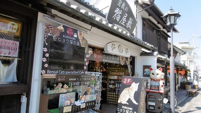 岡山県の倉敷美観地区にある猫屋敷