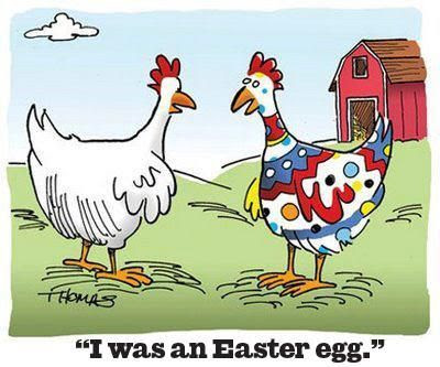 he was an easter egg, easter egg hatched, easter funny, farm funny, farm humor, chicken humor, orinthology humor, farm joke, chicken joke, easter egg joke