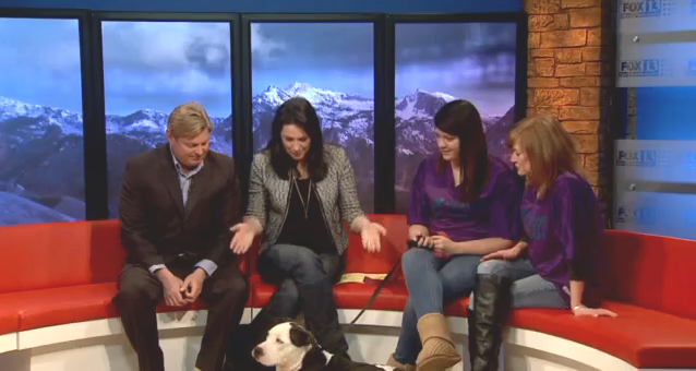 THE APPRECIATION OF BOOTED NEWS WOMEN BLOG : Good Day Utah Guest ...