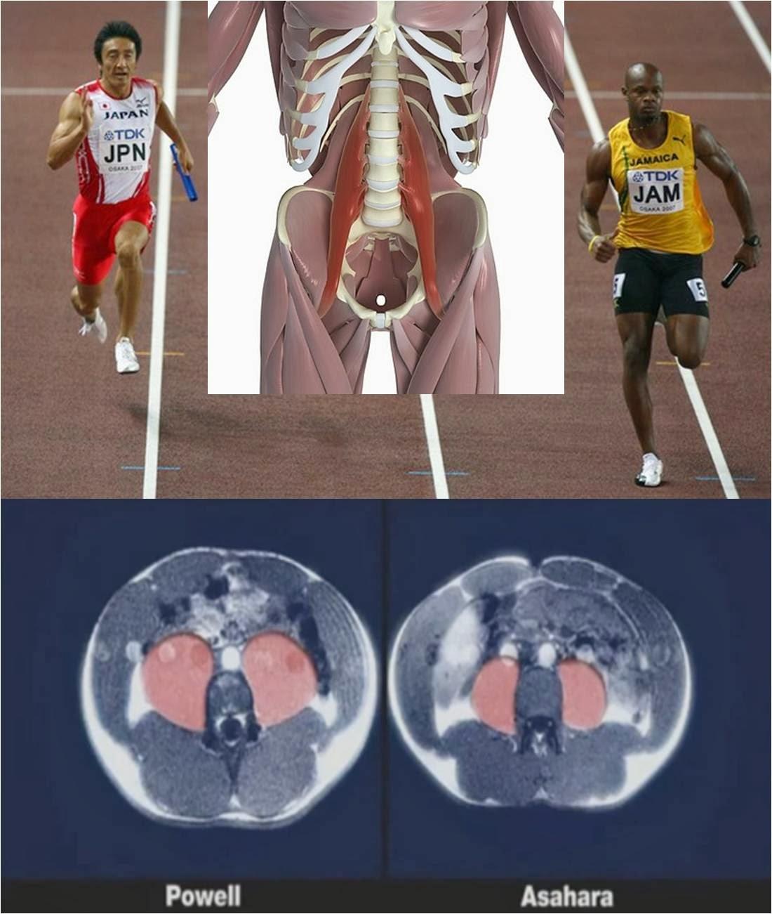 Valoración del movimiento y prescripción de ejercicio: La..