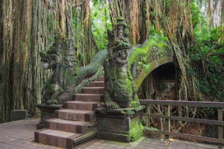 Tour Wenara Wana Ubud Bali