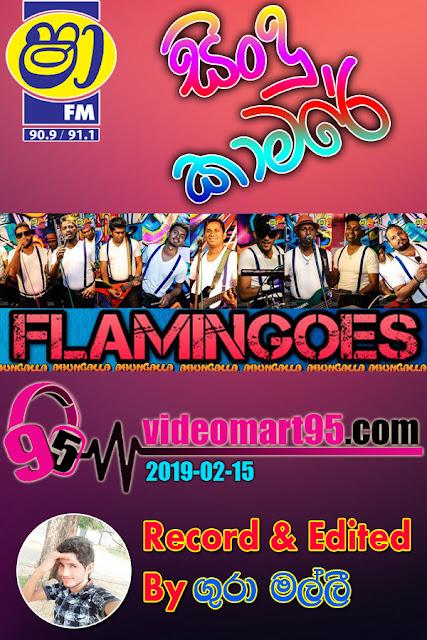 SHAA FM SINDU KAMARE WITH FLAMINGOES 2019-02-15