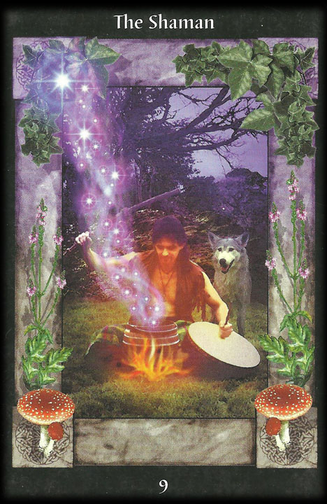 The Shaman. Image from Celtic Tarot Card Meanings: symbols of the ancient Celts http://www.dnfrost.com/2017/03/celtic-tarot-card-meanings-inspired.html An inspired contribution by D.N.Frost @DNFrost13 Part 5 of a series.