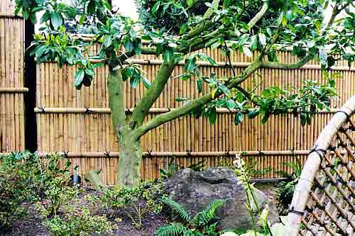 Bamboo Garden Fence Landscapes