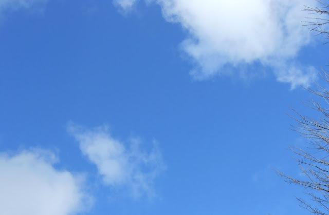 Rosie's perfect sky