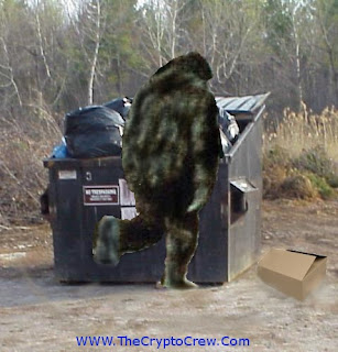 Bigfoot seen in dumpster