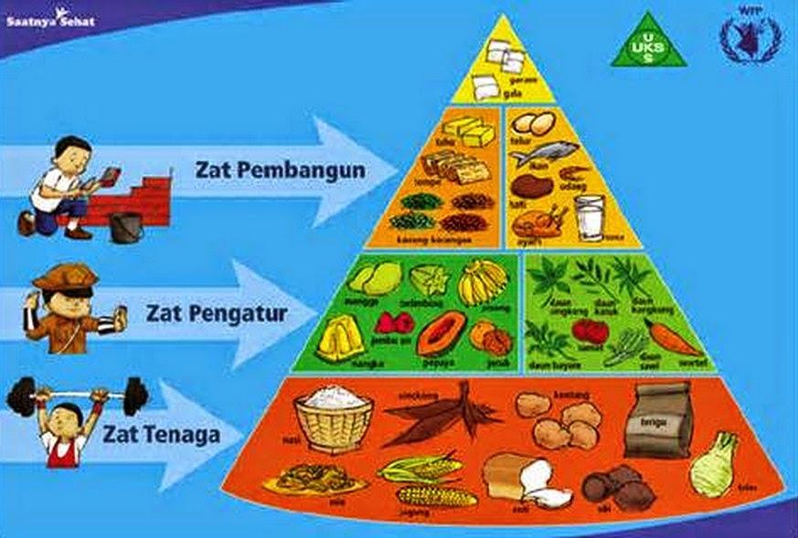 Fungsi Dan Contoh Sumber Zat Makanan Karbohidrat Protein Vitamin